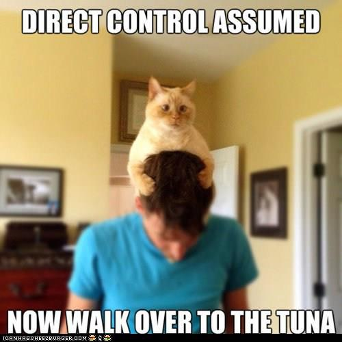 direct control assumed
