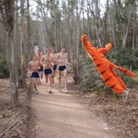 THE WONDERFUL THING ABOUT TIGGERS IS TIGGERS WILL FUCK UP YOUR MORNING JOG