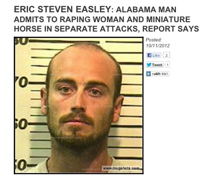 alabama man arrested for raping miniature horse