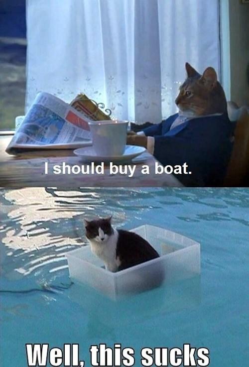 I should buy a boat - pichars.org