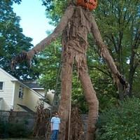 Scarecrow WIN