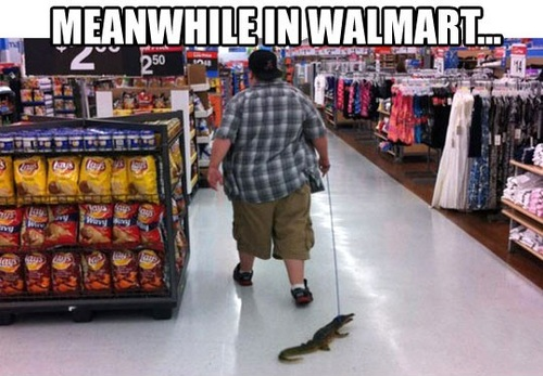 Meanwhile in WallMart - pichars.org