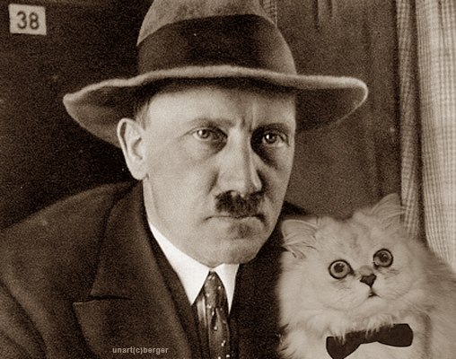 hitler cat - pichars.org