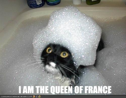 i am the queen of france - pichars.org