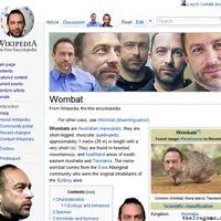 jimmy wales wombat